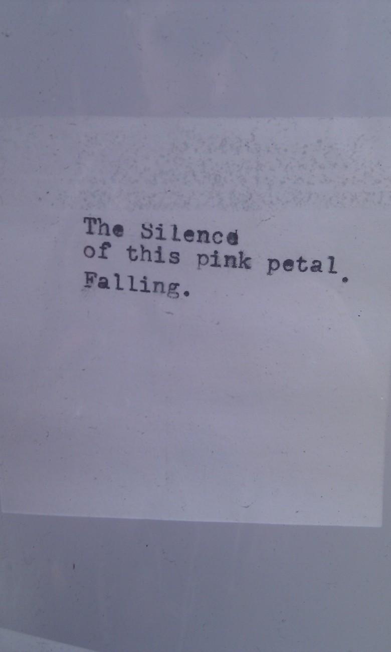 petal petal